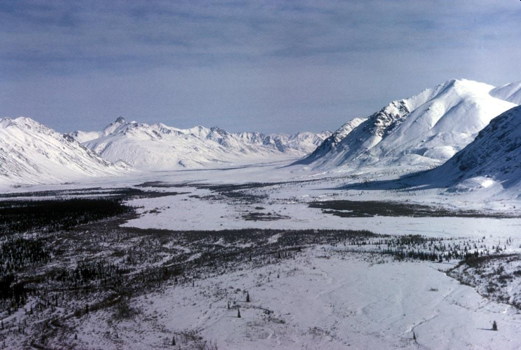 Arctic during the winter