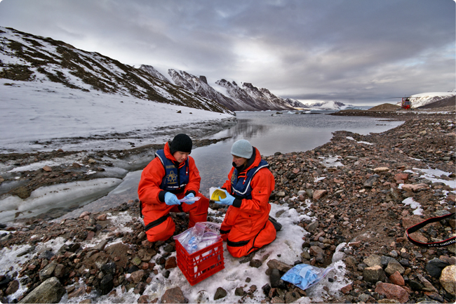 Researchers collecting samples in the Arctic