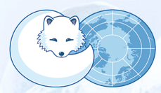 The Arctic Council