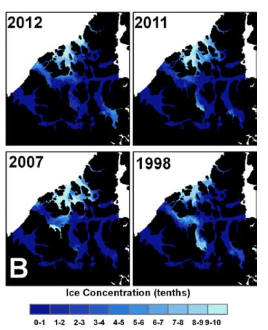 Sea Ice concentrations in the extreme low years of 2012, 2011, 2007 and 1998